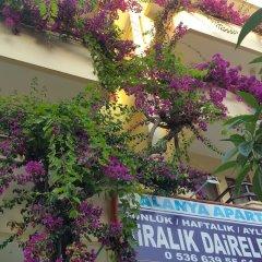 Alanya Apart Турция, Аланья - отзывы, цены и фото номеров - забронировать отель Alanya Apart онлайн балкон