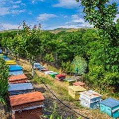 Отель HyeLandz Eco Village Resort развлечения
