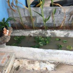 Отель Poopreaw Resort бассейн
