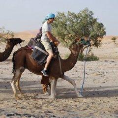 Отель Takojt Марокко, Мерзуга - отзывы, цены и фото номеров - забронировать отель Takojt онлайн спортивное сооружение