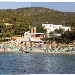 Club Mackerel Holiday Village Турция, Карабурун - отзывы, цены и фото номеров - забронировать отель Club Mackerel Holiday Village онлайн фото 13