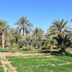 Отель Chez Belkecem Марокко, Мерзуга - отзывы, цены и фото номеров - забронировать отель Chez Belkecem онлайн фото 6