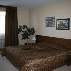 Отель Evelina Palace Hotel Болгария, Банско - отзывы, цены и фото номеров - забронировать отель Evelina Palace Hotel онлайн удобства в номере фото 2