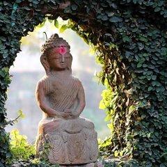 Отель Vajra Непал, Катманду - отзывы, цены и фото номеров - забронировать отель Vajra онлайн приотельная территория