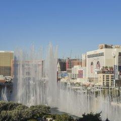 Отель Jockey Club Suite США, Лас-Вегас - отзывы, цены и фото номеров - забронировать отель Jockey Club Suite онлайн приотельная территория