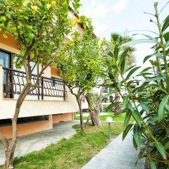 Отель Lemon Garden Villa Греция, Пефкохори - отзывы, цены и фото номеров - забронировать отель Lemon Garden Villa онлайн фото 5