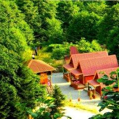 Ayder Selale Dag Evi Турция, Чамлыхемшин - отзывы, цены и фото номеров - забронировать отель Ayder Selale Dag Evi онлайн бассейн фото 2