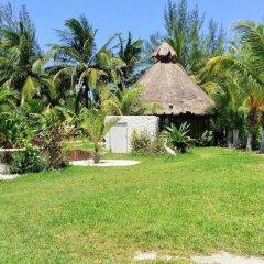 Отель Maya Hotel Residence Мексика, Остров Ольбокс - отзывы, цены и фото номеров - забронировать отель Maya Hotel Residence онлайн фото 5