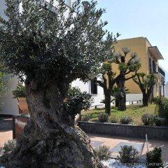 Отель Costa Hotel Италия, Помпеи - отзывы, цены и фото номеров - забронировать отель Costa Hotel онлайн фото 10