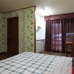Отель Mayfair Pension Южная Корея, Пхёнчан - отзывы, цены и фото номеров - забронировать отель Mayfair Pension онлайн удобства в номере