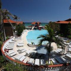 Отель Mangos Boutique Beach Resort с домашними животными