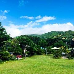 Отель Daegwalnyeong Beauty House Pension Южная Корея, Пхёнчан - отзывы, цены и фото номеров - забронировать отель Daegwalnyeong Beauty House Pension онлайн фото 12