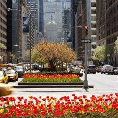 Отель Loews Regency New York Hotel США, Нью-Йорк - отзывы, цены и фото номеров - забронировать отель Loews Regency New York Hotel онлайн помещение для мероприятий фото 2