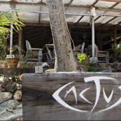 Отель Cactus Bungalow Самуи фото 2