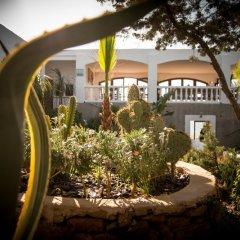 Отель Hostal Rural La Torre Испания, Сан-Антони-де-Портмань - отзывы, цены и фото номеров - забронировать отель Hostal Rural La Torre онлайн фото 5