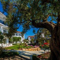 Отель Flegra Palace фото 5