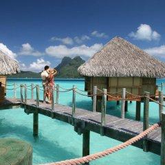 Отель Bora Bora Pearl Beach Resort Французская Полинезия, Бора-Бора - отзывы, цены и фото номеров - забронировать отель Bora Bora Pearl Beach Resort онлайн приотельная территория