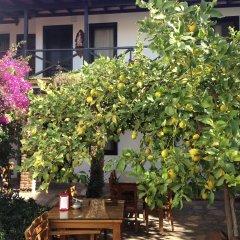 Nilya Hotel фото 10