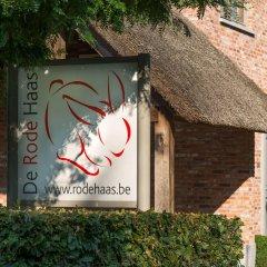Отель De Rode Haas развлечения