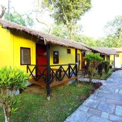 Отель Safari Adventure Lodge Непал, Саураха - отзывы, цены и фото номеров - забронировать отель Safari Adventure Lodge онлайн фото 10