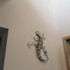 Гостиница Панорама в Суздале отзывы, цены и фото номеров - забронировать гостиницу Панорама онлайн Суздаль фото 2