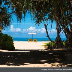 Отель Palm Beach Inn and Sea Shells Cabanas пляж