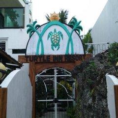 Отель Turtle Inn Resort Филиппины, остров Боракай - 1 отзыв об отеле, цены и фото номеров - забронировать отель Turtle Inn Resort онлайн фото 3