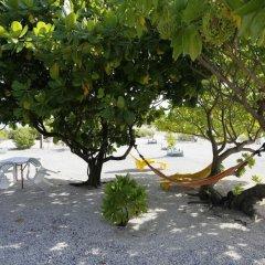 Отель Hakamanu Lodge Французская Полинезия, Тикехау - отзывы, цены и фото номеров - забронировать отель Hakamanu Lodge онлайн фото 8