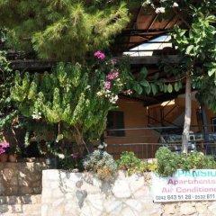 Jet Pension Турция, Патара - отзывы, цены и фото номеров - забронировать отель Jet Pension онлайн фото 6