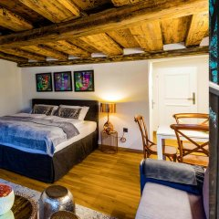 Отель APT - Stone Lodge Salzburg Зальцбург комната для гостей