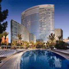 Отель ARIA Resort & Casino at CityCenter Las Vegas США, Лас-Вегас - 1 отзыв об отеле, цены и фото номеров - забронировать отель ARIA Resort & Casino at CityCenter Las Vegas онлайн бассейн