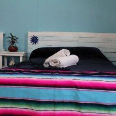 Отель Hostal Yolotl Мексика, Гвадалахара - отзывы, цены и фото номеров - забронировать отель Hostal Yolotl онлайн фото 3