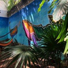 Отель The Mermaid Hostel Downtown - Adults Only Мексика, Канкун - отзывы, цены и фото номеров - забронировать отель The Mermaid Hostel Downtown - Adults Only онлайн бассейн фото 3