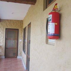 Отель Jungle Safari Lodge Непал, Саураха - отзывы, цены и фото номеров - забронировать отель Jungle Safari Lodge онлайн интерьер отеля фото 3