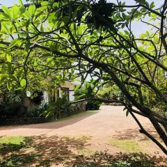 Hotel Lagoon Paradise фото 12