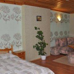 Отель Family Hotel Shoky Болгария, Чепеларе - отзывы, цены и фото номеров - забронировать отель Family Hotel Shoky онлайн комната для гостей фото 2