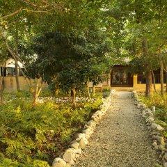 Отель Maruni Sanctuary by KGH Group Непал, Саураха - отзывы, цены и фото номеров - забронировать отель Maruni Sanctuary by KGH Group онлайн фото 13