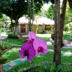 Blanco Hostel at Lanta Ланта фото 15