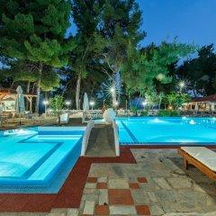 Отель Porfi Beach Hotel Греция, Ситония - 1 отзыв об отеле, цены и фото номеров - забронировать отель Porfi Beach Hotel онлайн бассейн фото 3