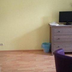 Отель Penzion u Vlčků Чехия, Хеб - отзывы, цены и фото номеров - забронировать отель Penzion u Vlčků онлайн удобства в номере фото 2