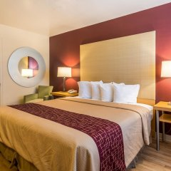Отель Red Roof Inn Tulare - Downtown/Fairgrounds комната для гостей фото 2