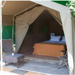 Отель Mahoora Tented Safari Camp - Kumana Шри-Ланка, Яла - отзывы, цены и фото номеров - забронировать отель Mahoora Tented Safari Camp - Kumana онлайн фото 3