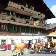 Отель Christiania Gstaad Швейцария, Гштад - отзывы, цены и фото номеров - забронировать отель Christiania Gstaad онлайн фото 7