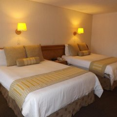 Отель Royal Pedregal Мехико комната для гостей фото 4