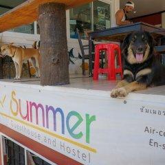 Отель Summer Guesthouse & Hostel Таиланд, Остров Тау - отзывы, цены и фото номеров - забронировать отель Summer Guesthouse & Hostel онлайн развлечения