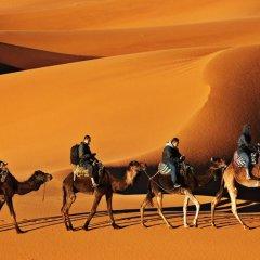 Отель Luxury Maktoub Марокко, Мерзуга - отзывы, цены и фото номеров - забронировать отель Luxury Maktoub онлайн пляж фото 2