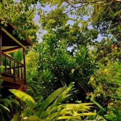 Отель Geejam Ямайка, Порт Антонио - отзывы, цены и фото номеров - забронировать отель Geejam онлайн фото 9