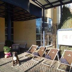 Отель 4mex Inn с домашними животными