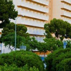 Mimosa Hotel Mallorca фото 3