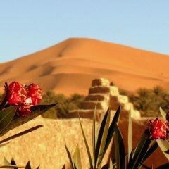 Отель Гостевой дом La Vallée des Dunes Марокко, Мерзуга - отзывы, цены и фото номеров - забронировать отель Гостевой дом La Vallée des Dunes онлайн балкон
